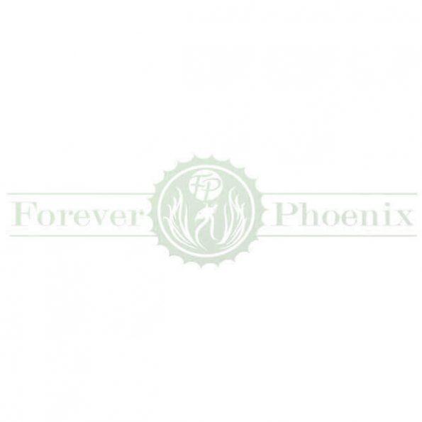 Forever-Phoenix-600×600-600×600