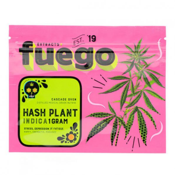 Fuego-Hash-Plant-Shatter-600×600