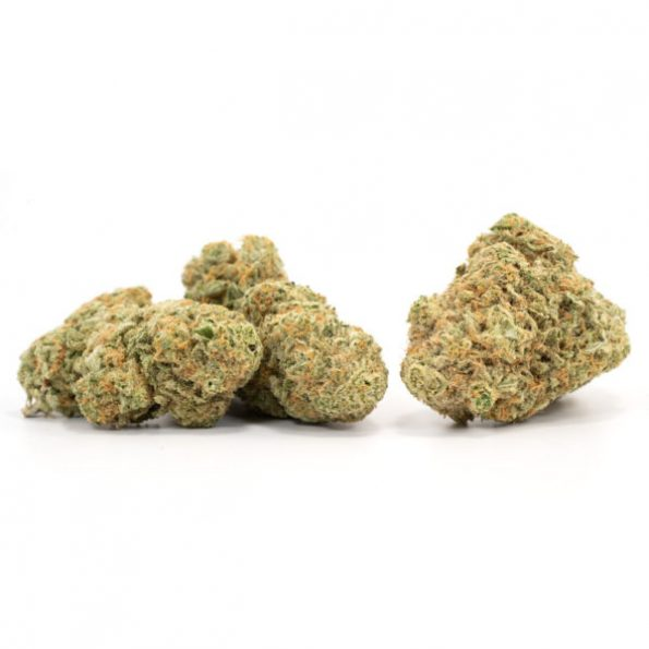 Girl-Scout-Cookies-3-600×600