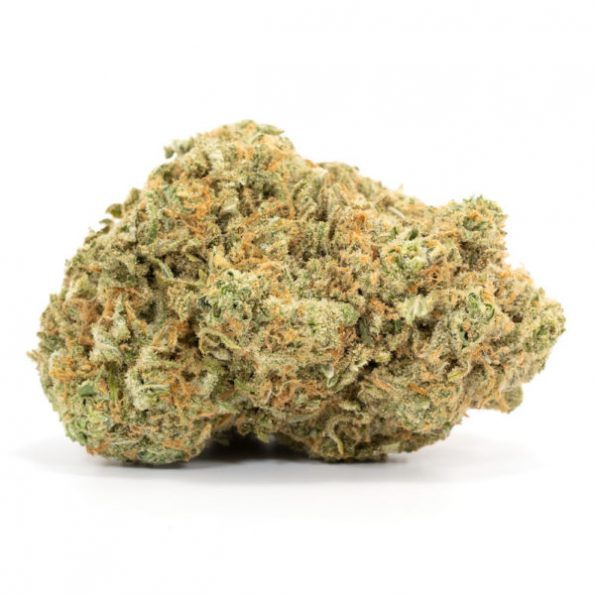 Girl-Scout-Cookies-600×600