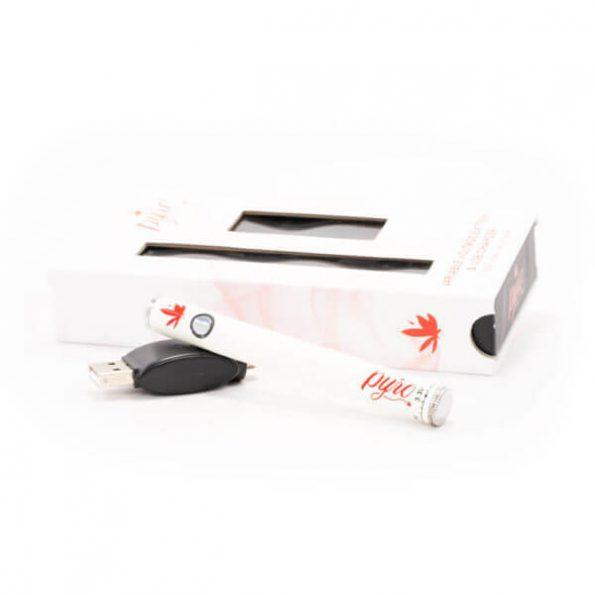 Pyro-Ceramic-Vape-Pen-Kit-2-600×600